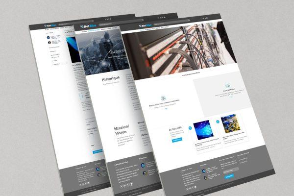 Web Design and Development, Netblue